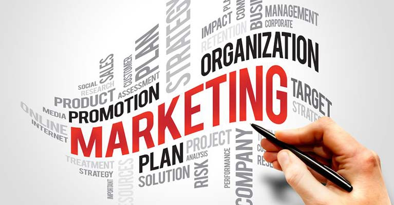 Marketing Strategy and Competitive Analysis